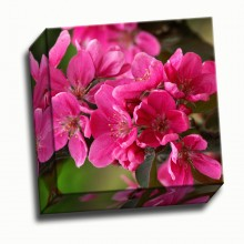 Custom canvas print square Full Color