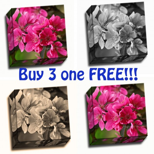 Buy 3 one free